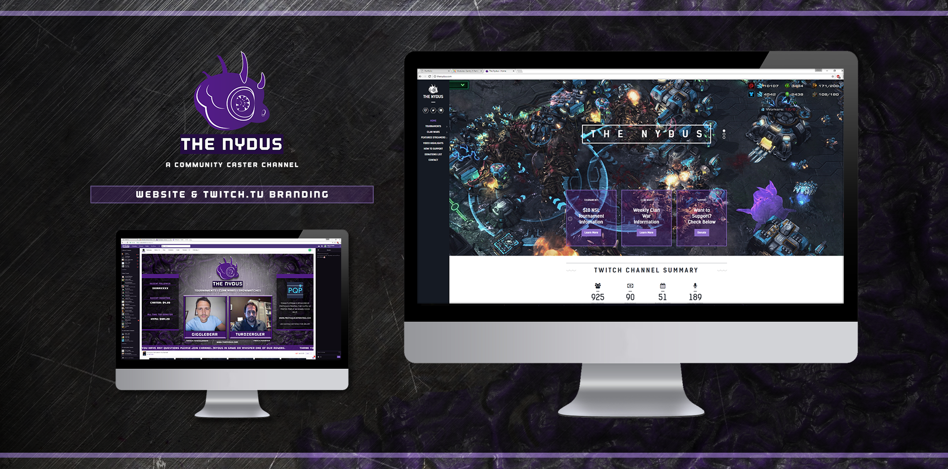 The Nydus Website & Branding